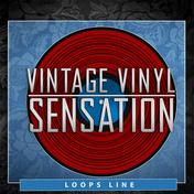 Vintage Vinyl Sensation