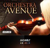 Orchestra Avenue