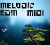 Мелодические модели edm